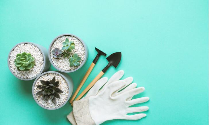 観葉植物のお手入れにおすすめのスコップ10選