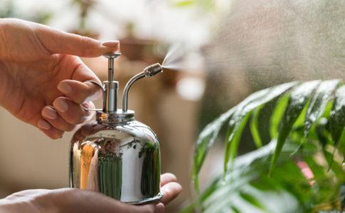 観葉植物用におすすめのおしゃれで使いやすい霧吹き15選!
