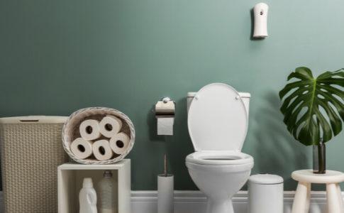 濃い緑の背景 トイレ