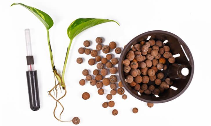 土からハイドロカルチャーに植え替える方法