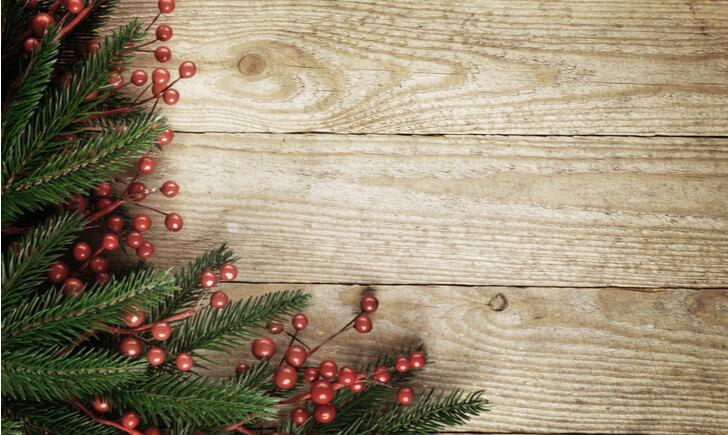 クリスマスにピッタリの観葉植物10選