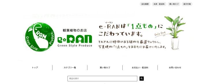 e-RAN