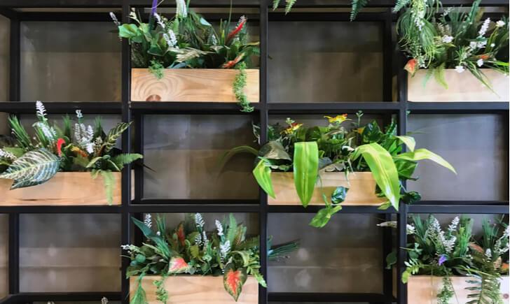 店舗に観葉植物を取り入れるとより雰囲気がアップする