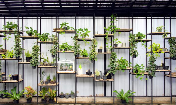 造園や緑化などの植物の施工はプロに任せるのが1番