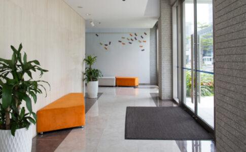 廊下にある観葉植物