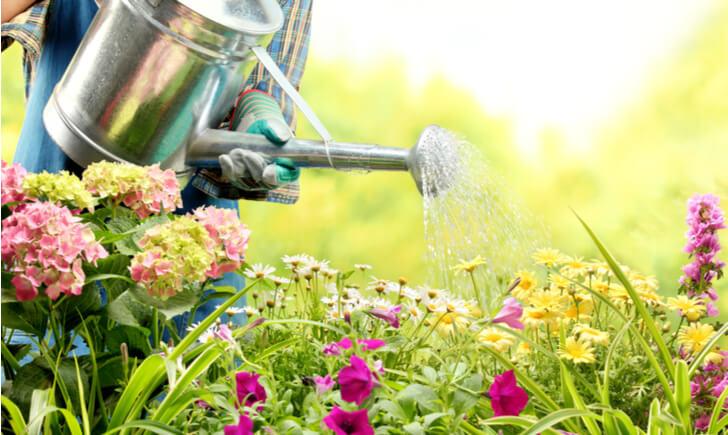 花に水をかける人