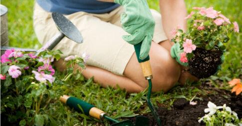 花を植える女性