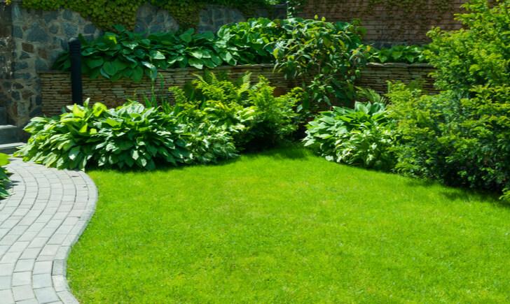植物施工業者の選び方