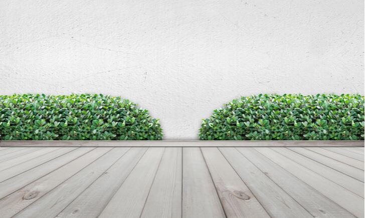 施行業者を使って手軽に植物を取り入れよう