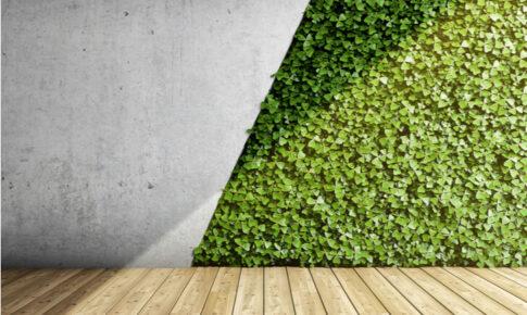 【千葉】植物の施工依頼ができるおすすめ業者5選!造園・緑化・レンタルグリーンサービスなど