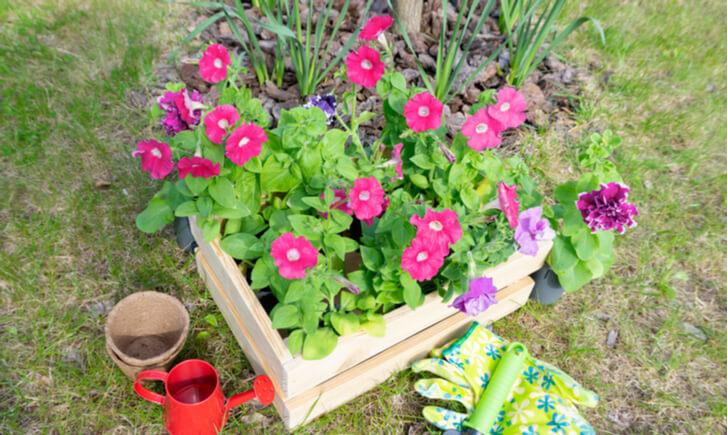 季節ごとに楽しめる寄せ植え