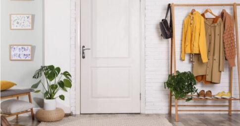 玄関に観葉植物